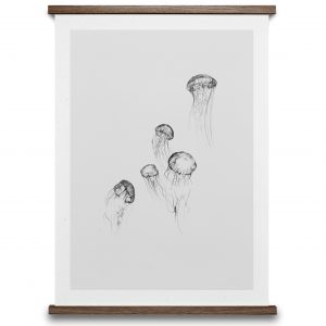 Illustration jellyfish Paper Collective